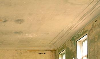 Manchas humedad techo humexpert expertos en humedades - Manchas de humedad ...