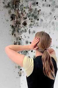 humedades-en-paredes