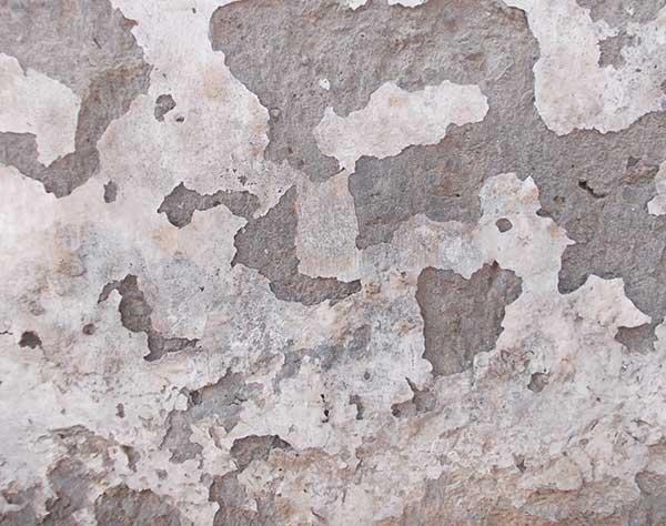 cómo quitar la humedad de la pared