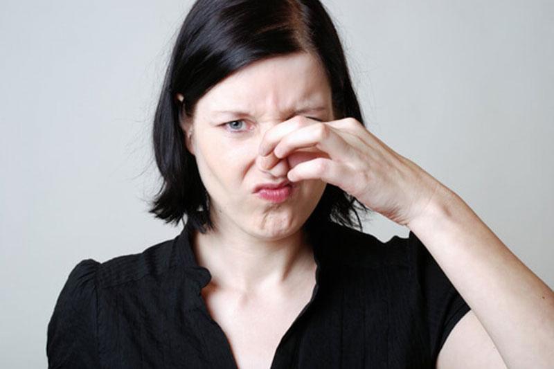 cómo eliminar el olor a humedad