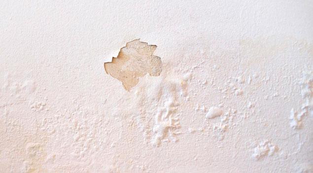 Humedades en la pared por capilaridad