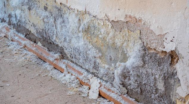 Humedades causadas por la filtración de agua desde el interior