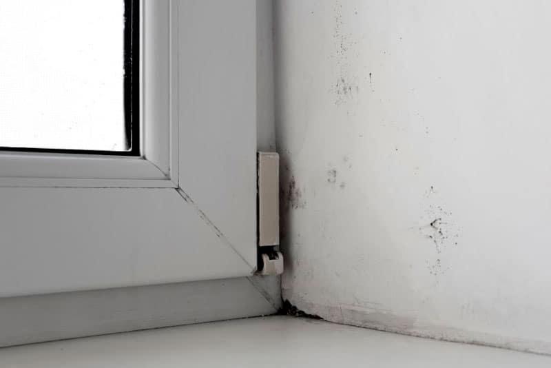 medir la humedad en el hogar
