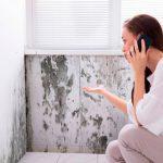 quitar humedades de las paredes de tu vivienda