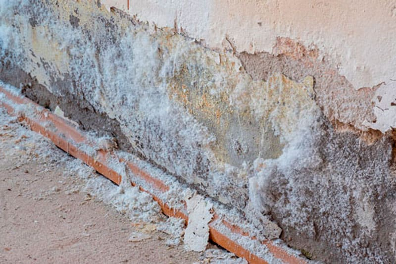eliminar humedades en Mallorca