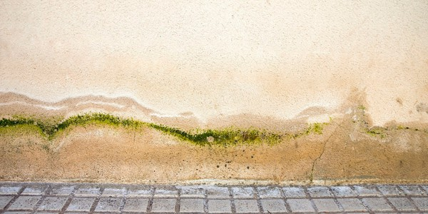 problemas de humedad por capilaridad en Alcudia