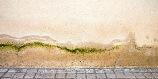 tipos de humedades por capilaridad en Inca