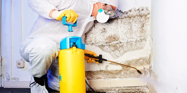 expertos en eliminar humedades por capilaridad en Magaluf