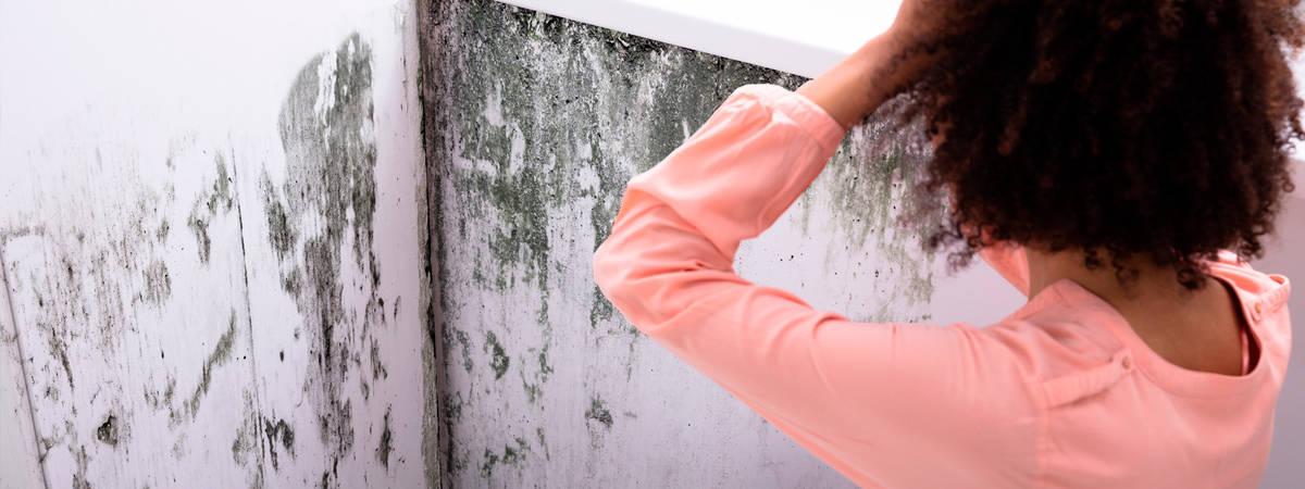 Humedad por condensación en Alcudia