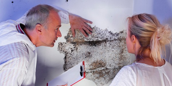 tipos de humedad por filtración en Alcudia
