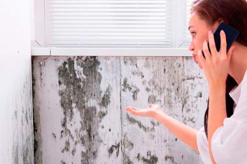 tratar humedades en viviendas