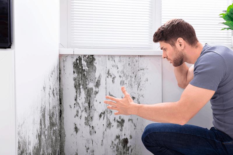 consecuencias de las humedades en las paredes